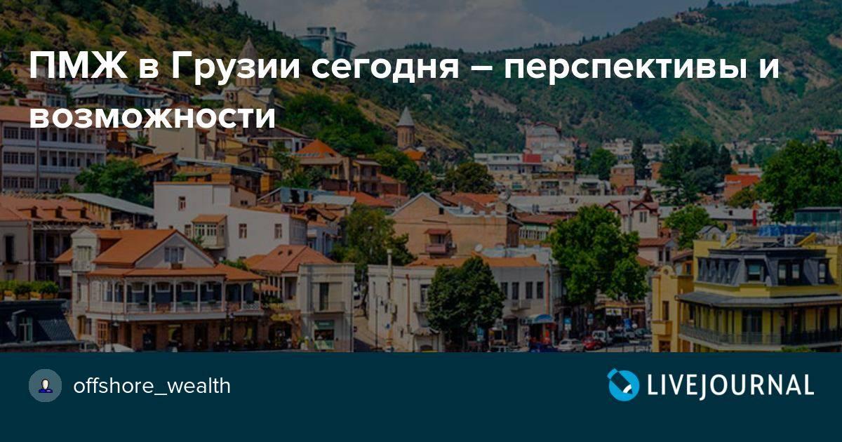 Уехать в грузию на пмж из россии - права россиян
