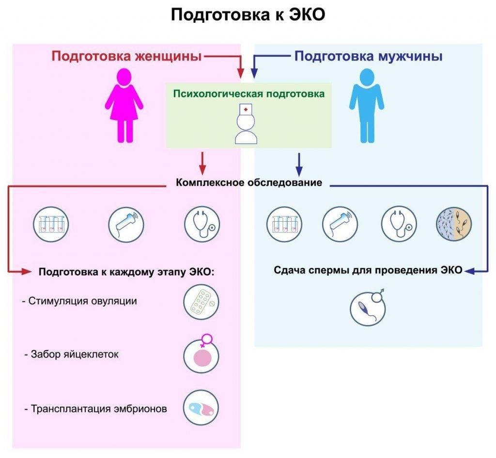 ЭКО в Польше: особенности, преимущества, клиники