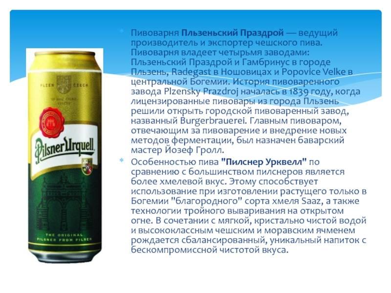 Что нужно знать о чешском пиве: топ-6 пивных туров в праге