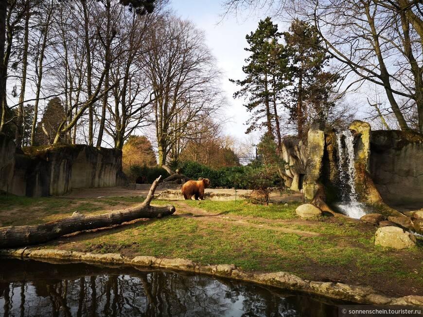 Зоопарк в ганновере: история создания и какие есть тематические зоны