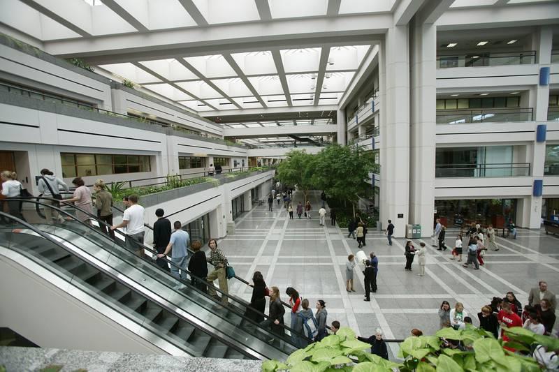 University of california los angeles: описание, факультеты и рейтинг
