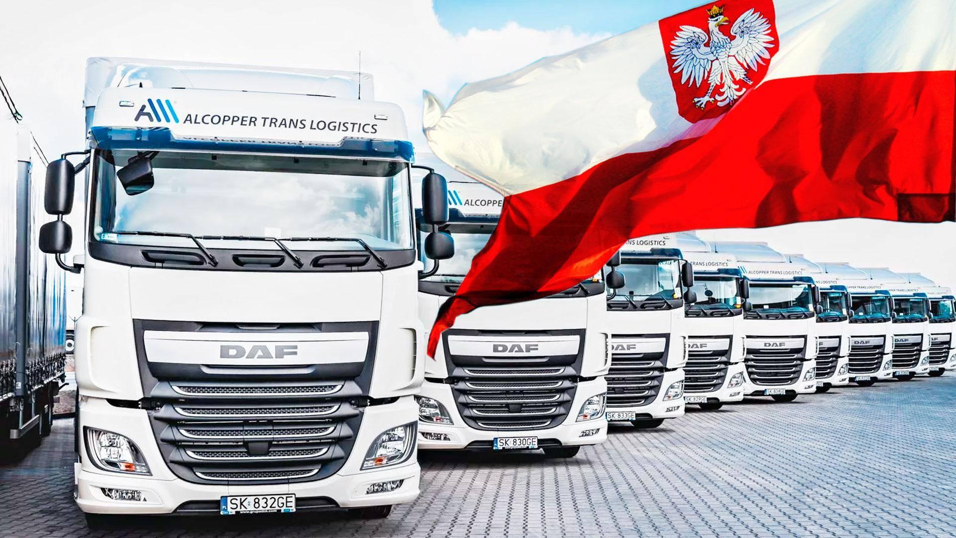 Работа в польше водителем международником без посредников для белорусов и украинцев: поиск вакансий для дальнобойщиков кат ce без посредников, без опыта