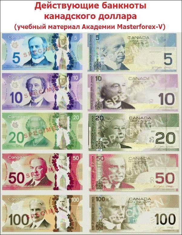 Национальная валюта южной кореи: банкноты, монеты, курс обмена