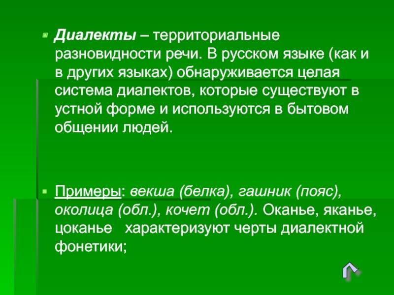 Особенности изучения чешского языка
