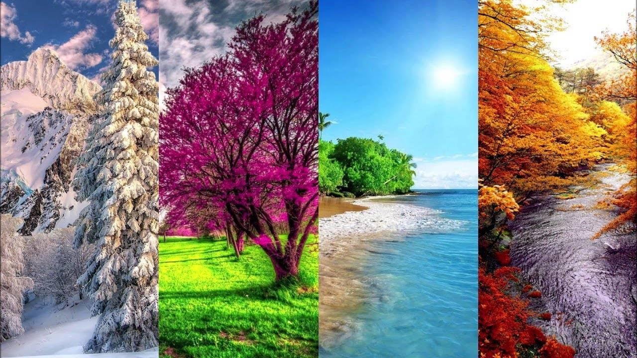 Климат венгрии летом, зимой, весной и осенью