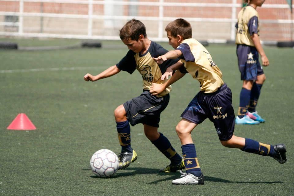 Спортивные программы