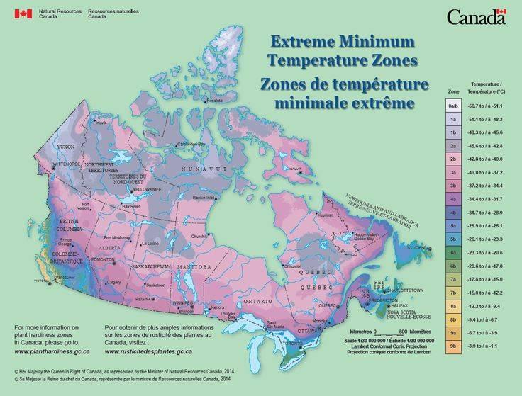 Климат канады: кратко о средних температурах в разные месяцы года
