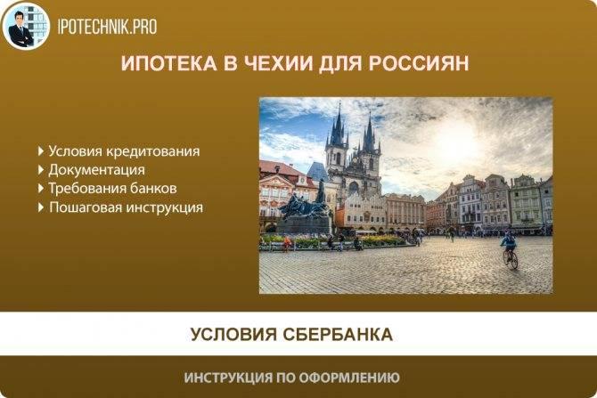 Бизнес в чехии для русских: какой можно открыть с нуля и где купить готовый?