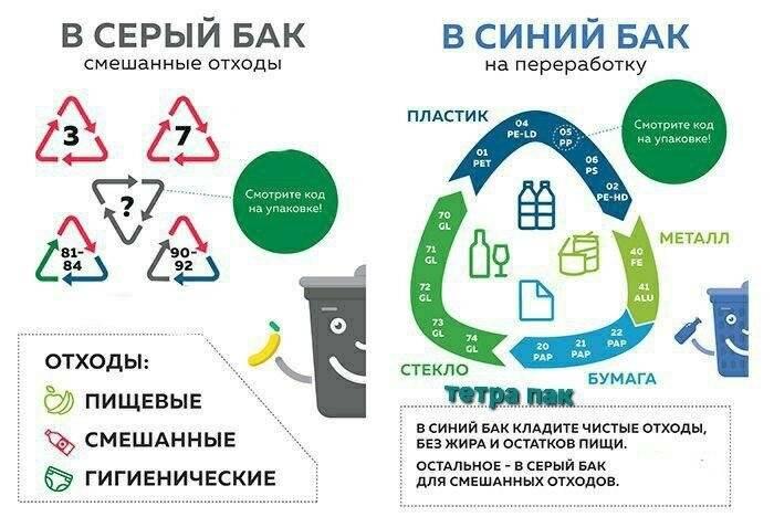 Интересные факты о переработке мусора в разных странах мира