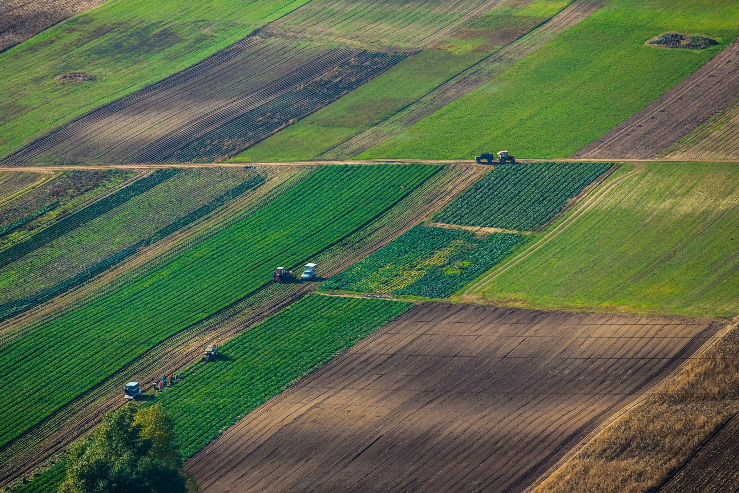 Земельная реформа в польше считается одной из самых успешных среди бывших стран соцлагеря » слово и дело