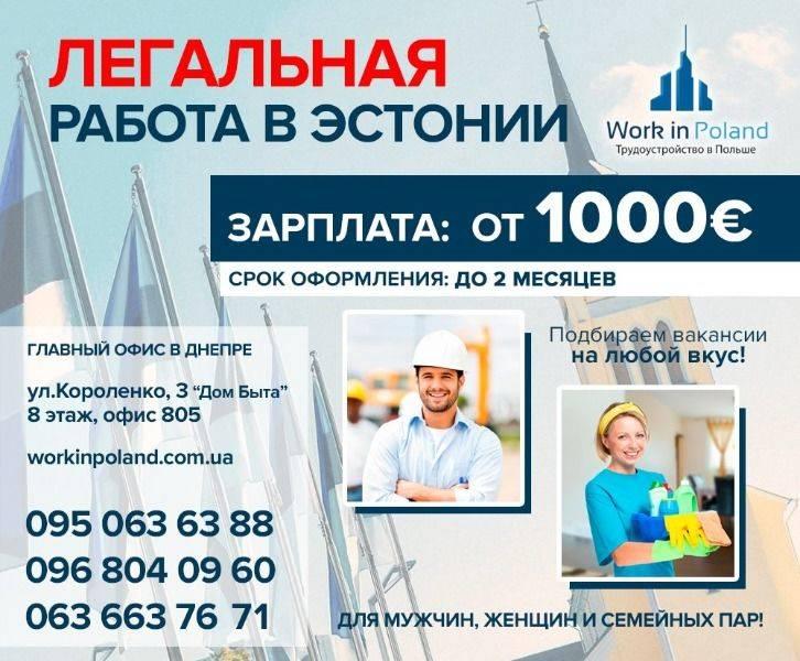 Как найти работу в таллине в 2021 году для русскоговорящих