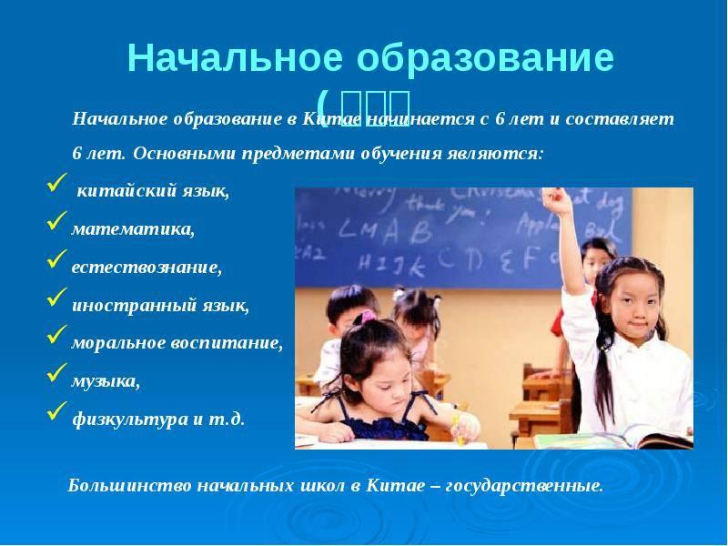 Система образования в китае: высшее, школьное и дошкольное