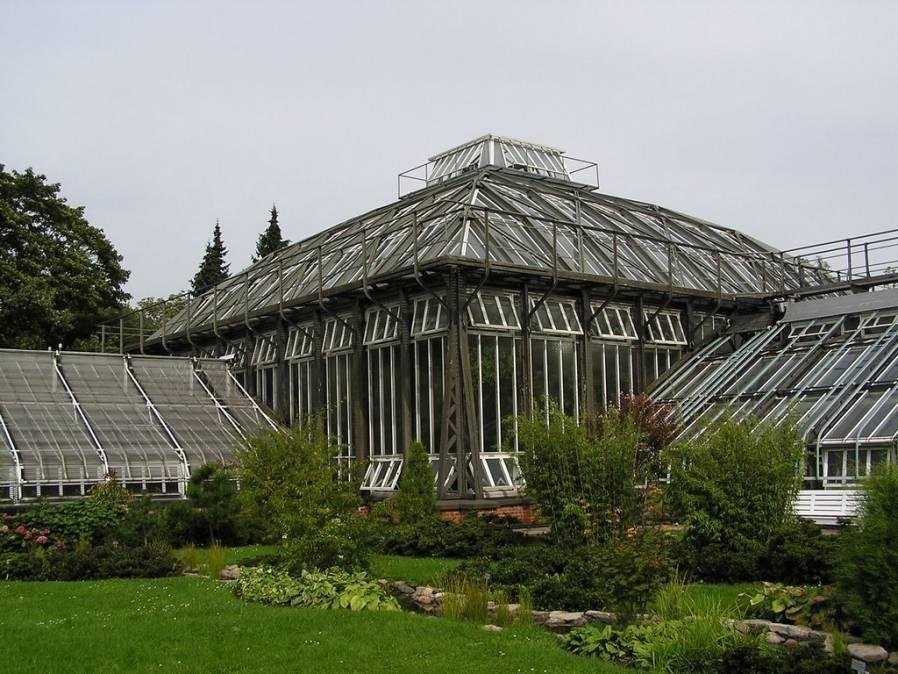 Ботанический сад (берлин) — википедия