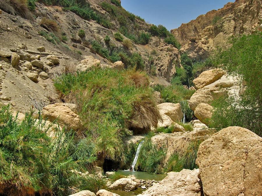 Национальные парки и заповедники Израиля вновь открываются для посетителей