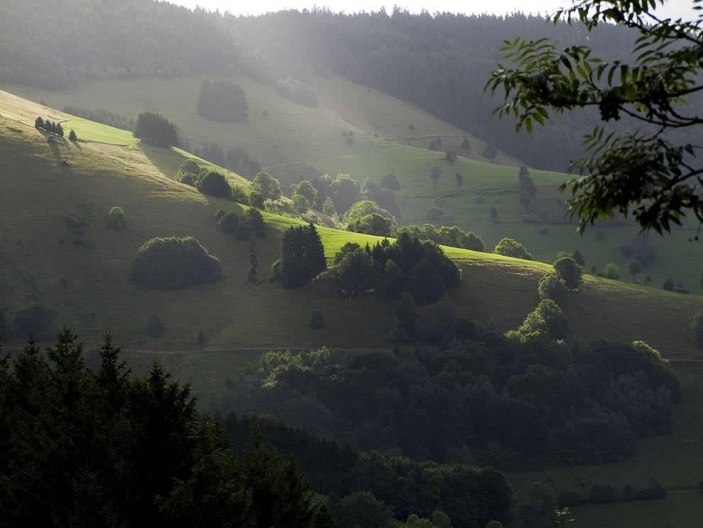 Шварцвальд (германия) ℹ️ где находятся черные леса, фото, достопримечательности, экскурсии, отзывы