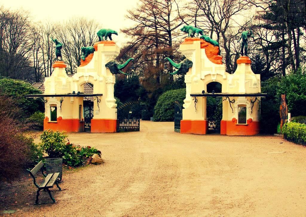 """Межрегиональная общественная организация """"зоологическое общество"""". гамбургский зоопарк: путешествие в мир дикой природы"""