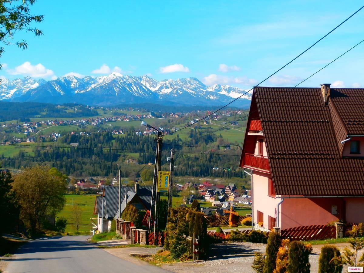 Недвижимость и уровень жизни в польше и чехии: сравнение цен на жилье, транспорт, продукты