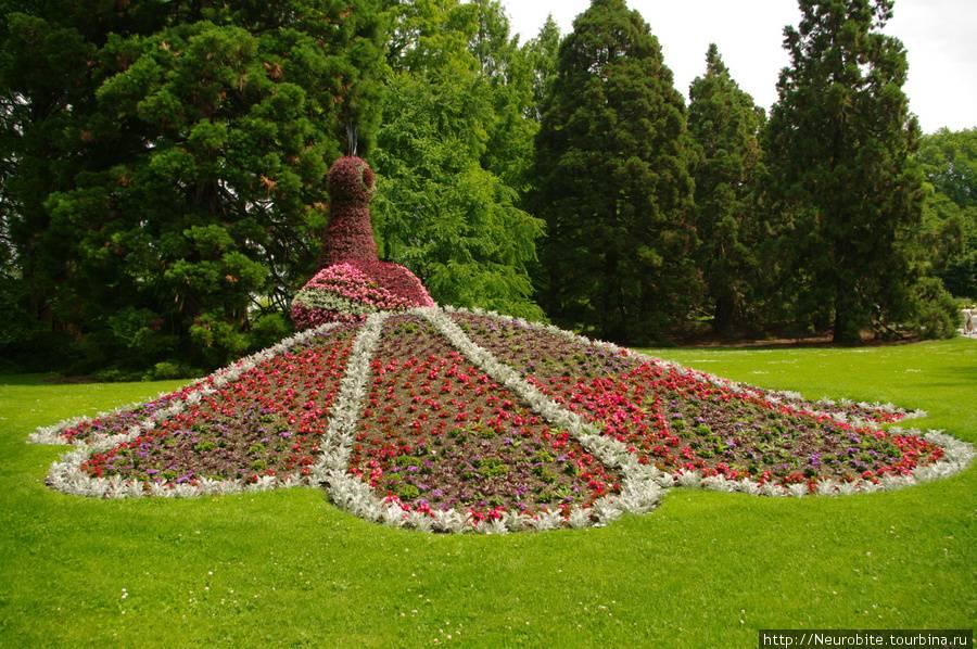 Сад майнау в германии