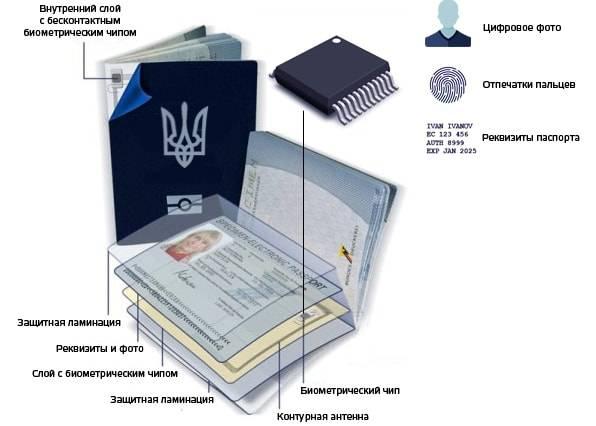 Как уехать в польшу на работу без рабочей визы по биометрическому паспорту?