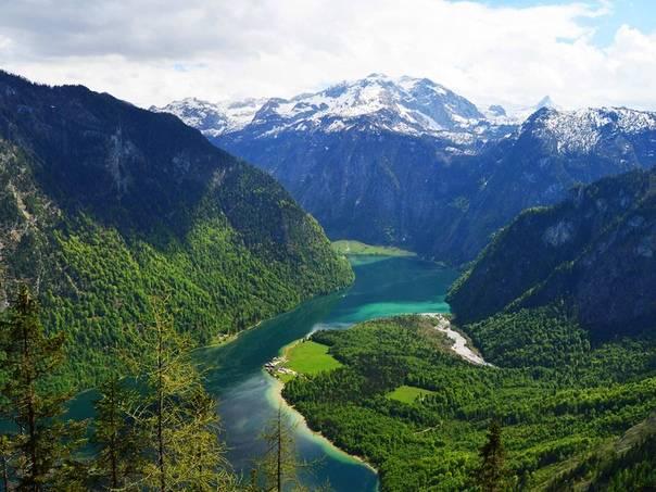 Германия: природа, заповедники, особенности флоры и фауны  :: syl.ru