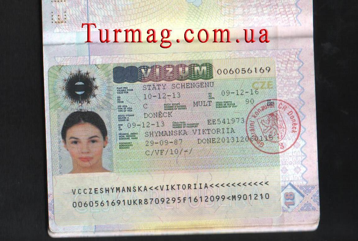 Виза в чехию для россиян - типы и способы оформления!