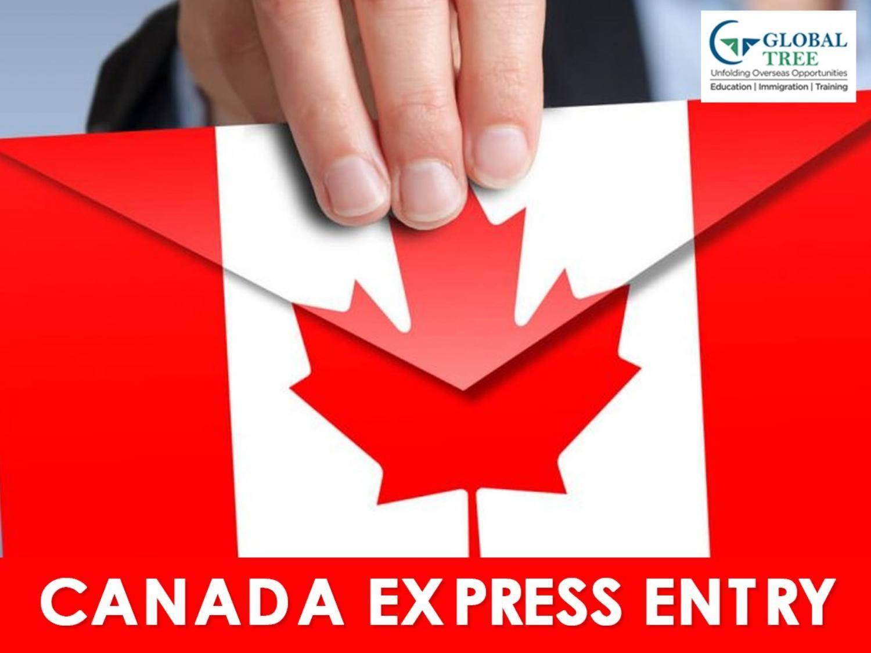 Программа express entry