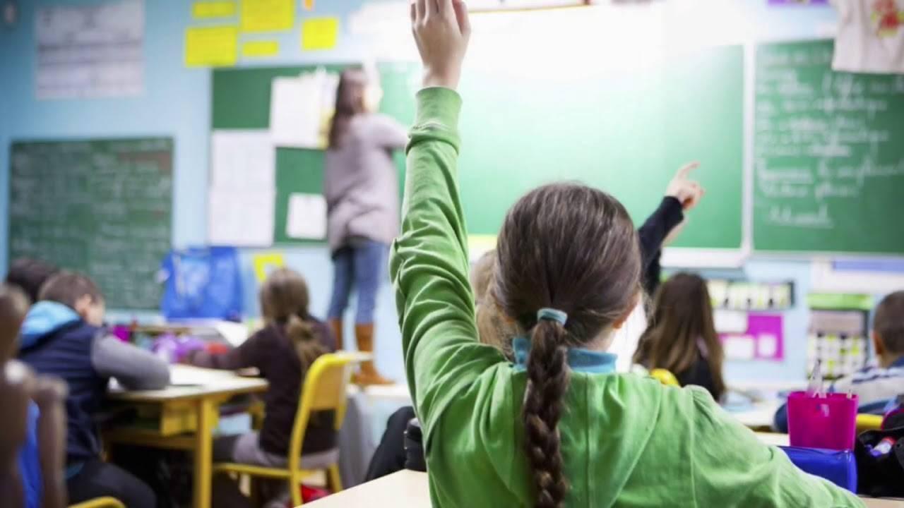 Обучение во франции для русских: как получить бесплатное образование и чем отличается система поступления и учеба в ес — вне берега