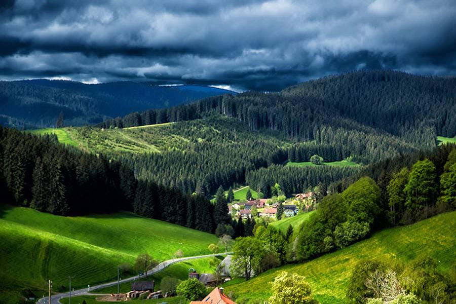 Шварцвальд - черный лес, баден-баден (германия): история, фото, как добраться, адрес на карте и время работы в 2021