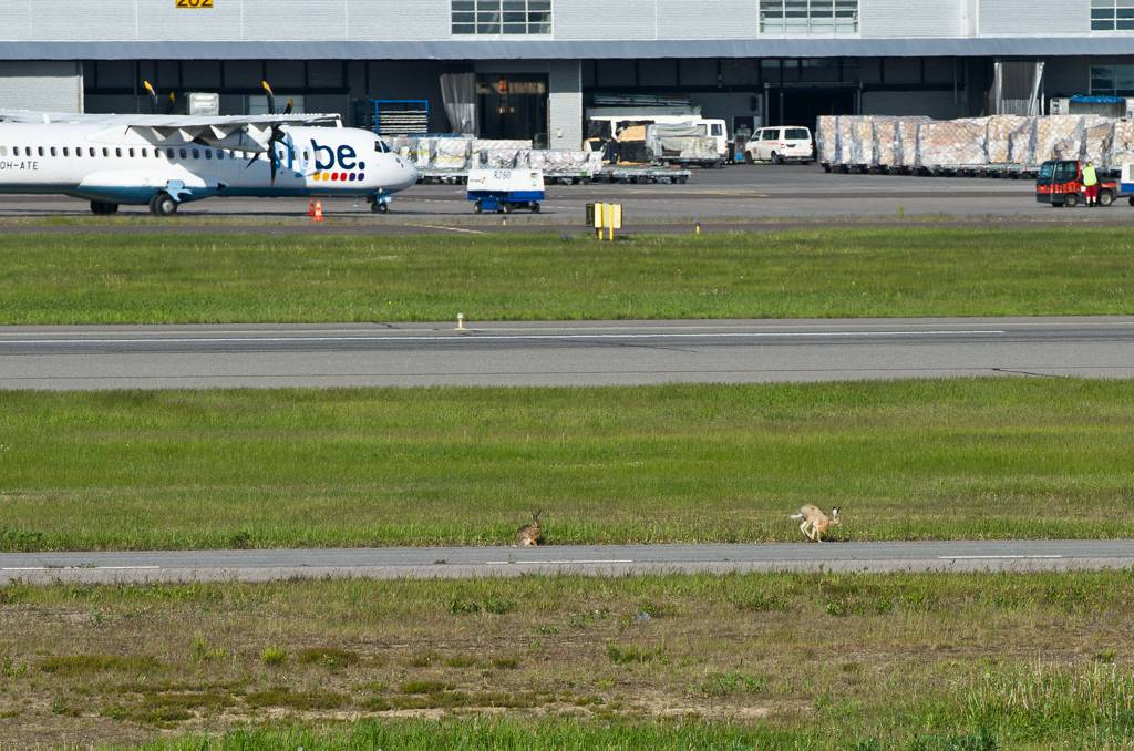 Аэропорт хельсинки вантаа парковка, схема, адрес, камера хранения