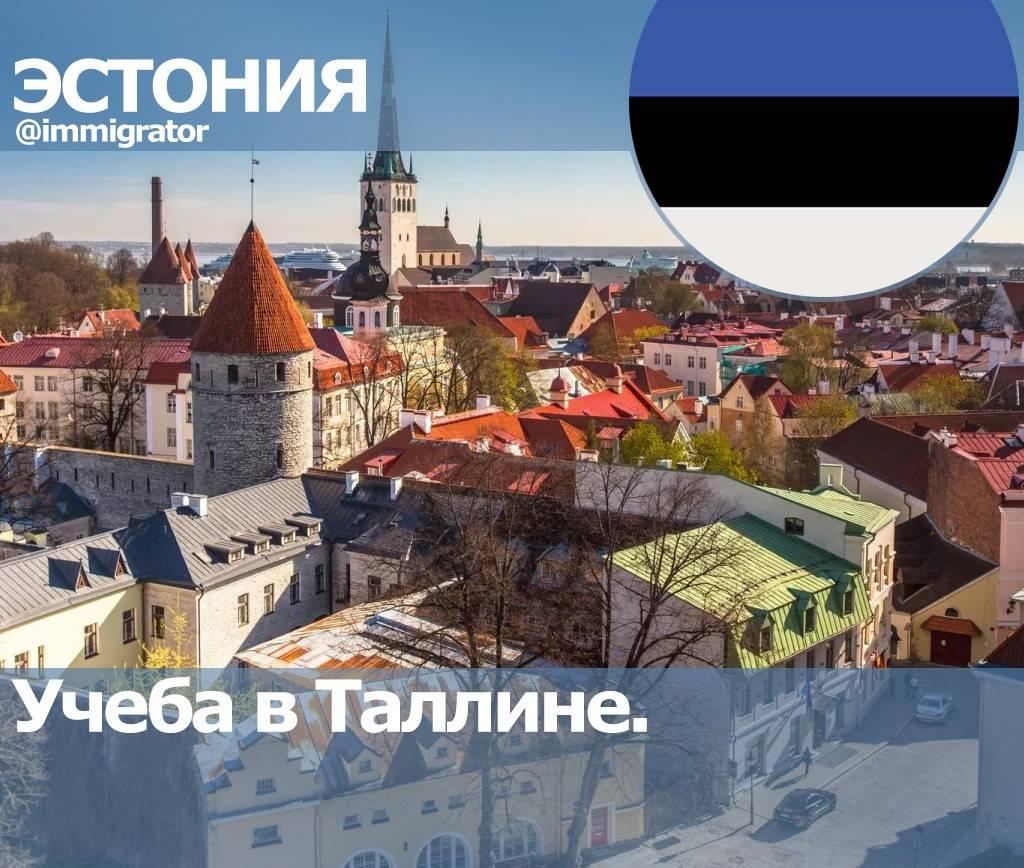 Работа в таллин - поиск актуальных вакансий - eurabota.ua