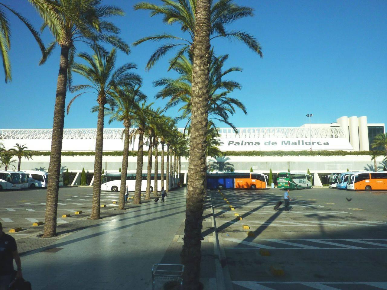 Аэропорт майорки - как добраться, история и справка