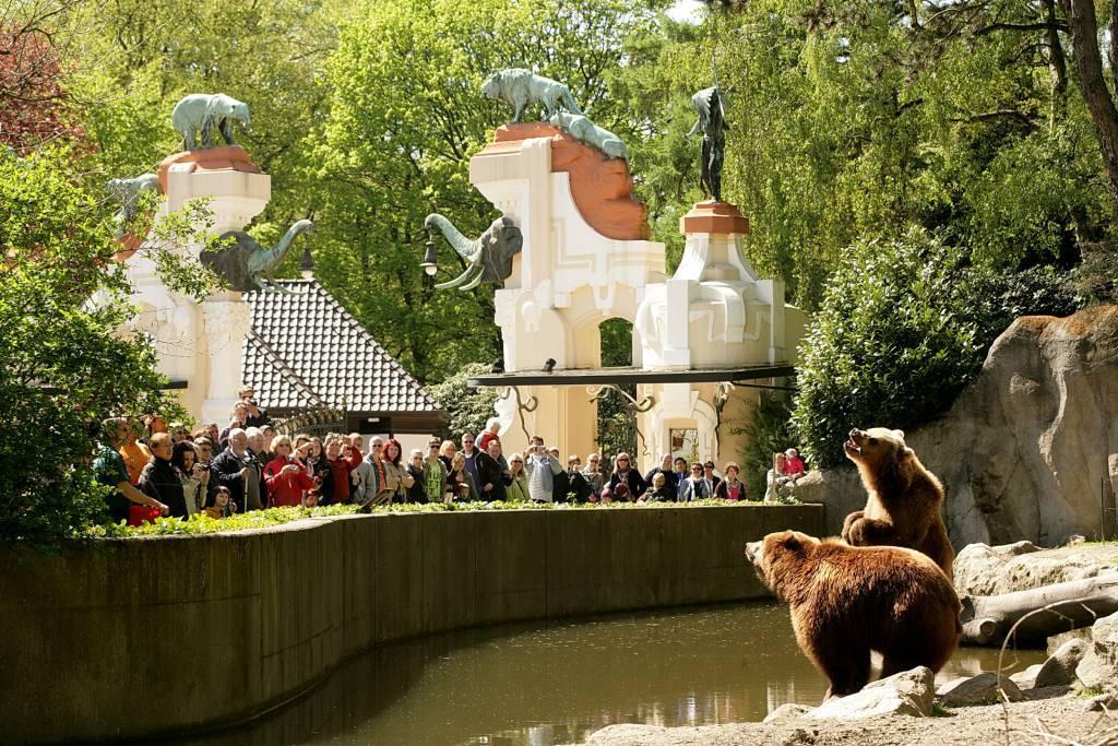 Зоопарк в гамбурге – 7 километров живой природы