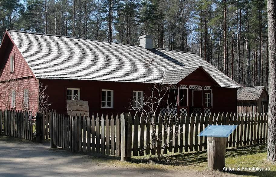 Почему эстония не любит россию: чем объясняется плохое отношение жителей страны к русским в прошлом и сейчас?