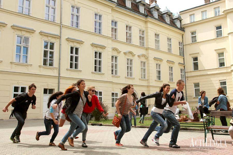 Образование в австрии — варианты бесплатного обучения для русских в вузах — стоимость и отзывы учебы в высшем учебном заведении от россиян — вне берега