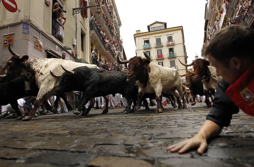 Безумный фестиваль сан-фермин в испании. опасные игры — коррида и энсьерра