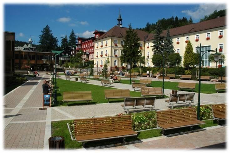 Лечение опорно-двигательного аппарата в чехии: санатории, курорты