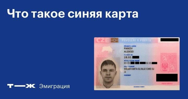 Что такое niebieska karta ue и как иностранцу получить голубую карту ес в польше?