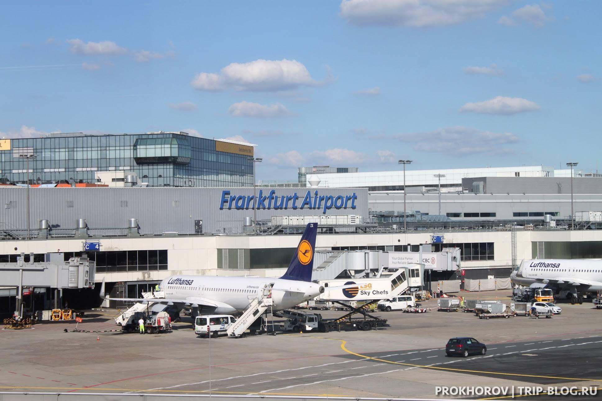 Путеводитель по аэропорту франкфурта